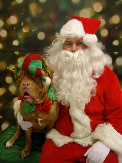 Petsmart Santa Claws Photo Event The Humane Society Of