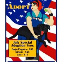July 2013 Adoption Specials