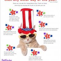 july-4-cat
