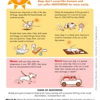 Summer Heat poster 2013
