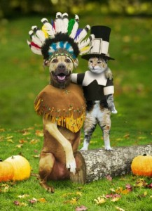 Thanksgiving - Dog and Cat - Use