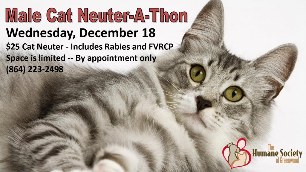 12/18/13 Neuterathon