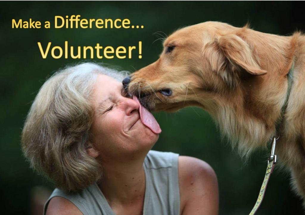 VolunteerDogKissingWoman