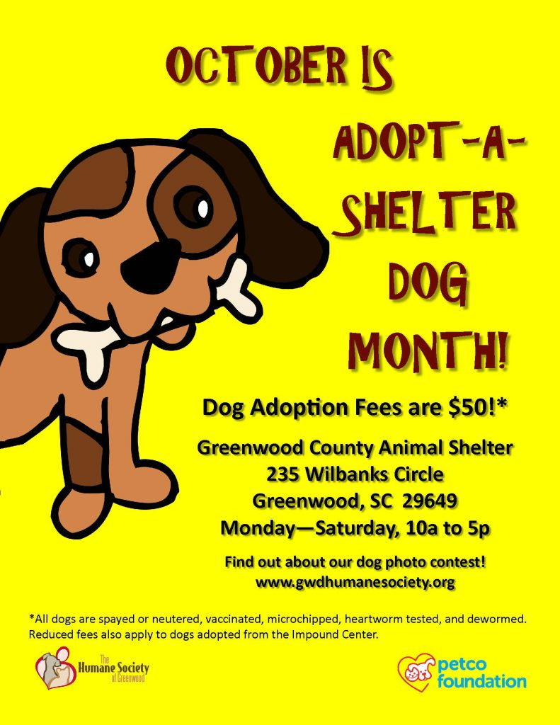 adopt-a-dog-month-poster