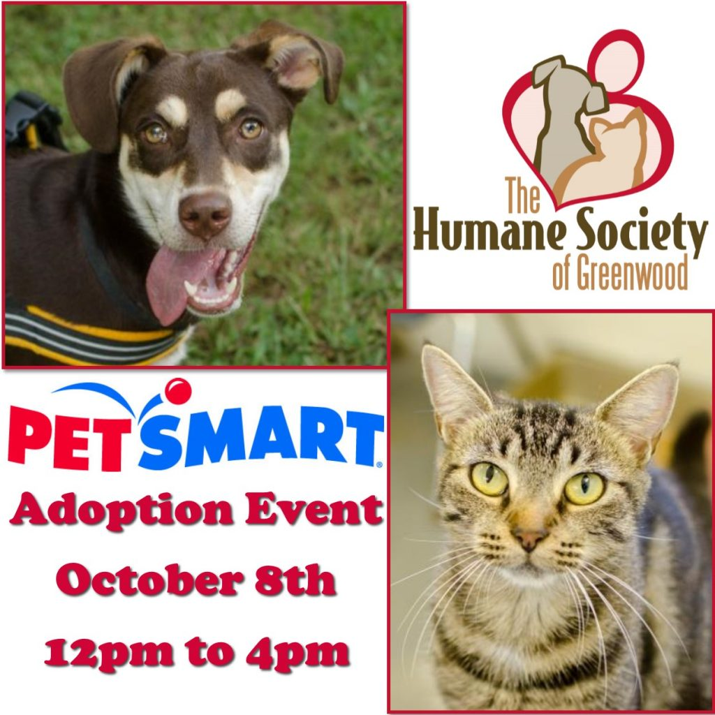 oct-aepetsmart10-8-16